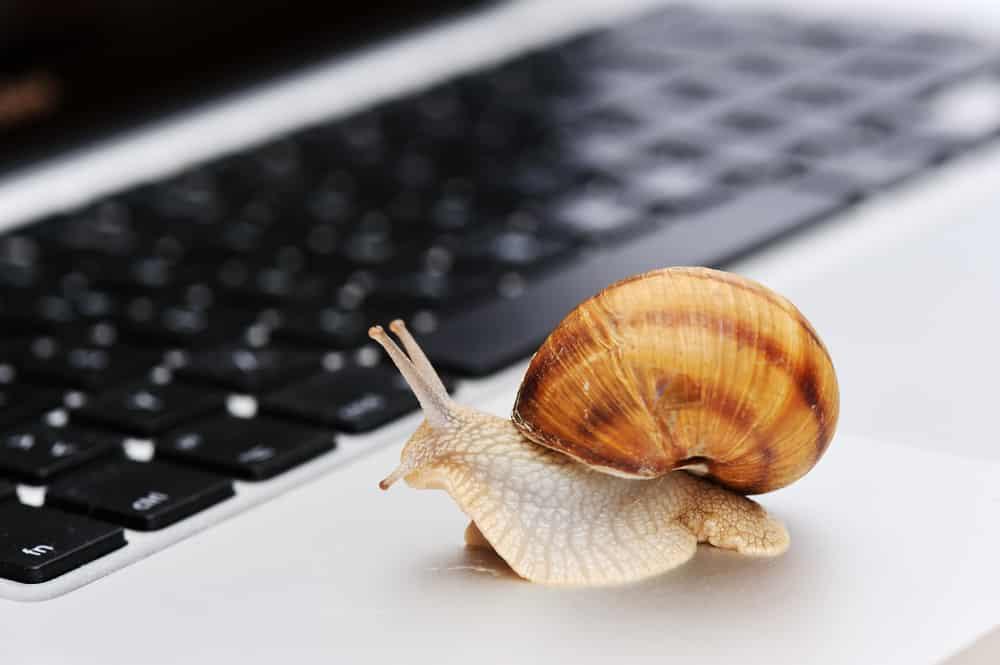 new computer slow internet