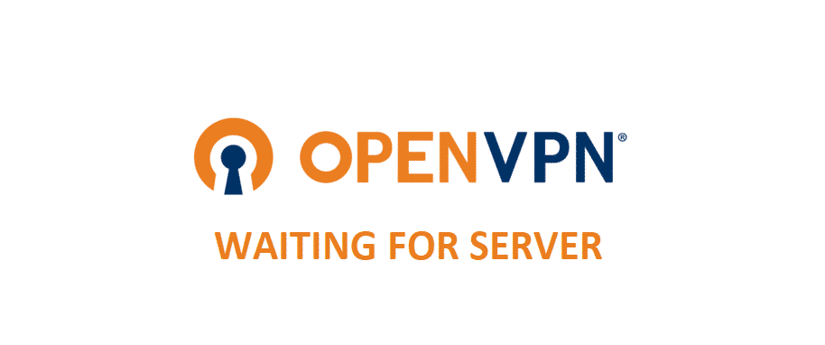 openvpn waiting for server