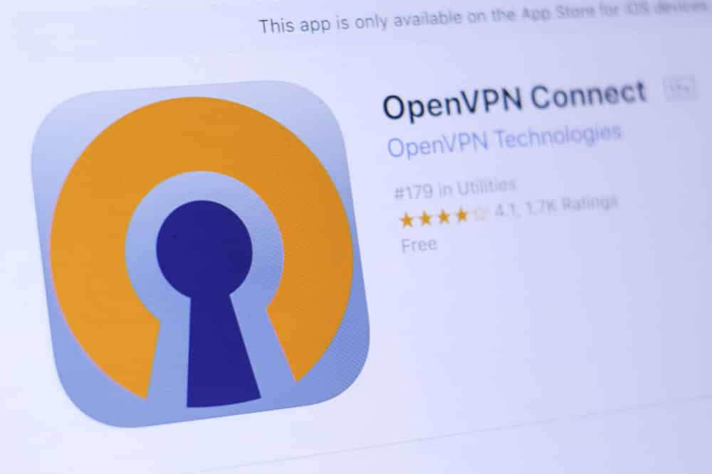 openvpn connect on startup